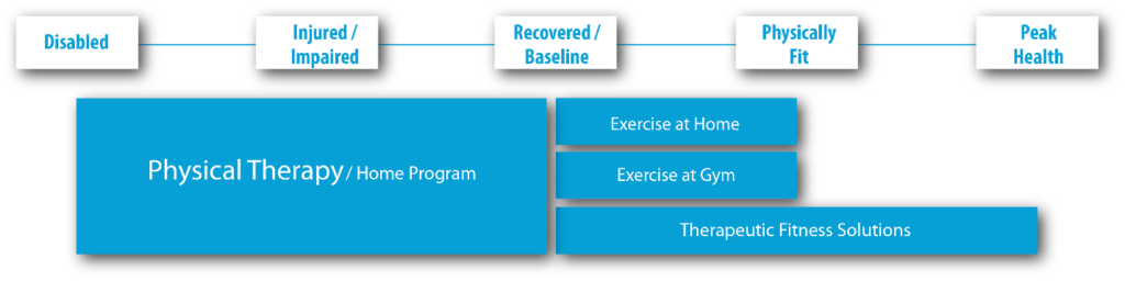 Chart of Who Can Be Helped by In-Home Therapeutic Fitness Solutions from Family Physical Therapy Services of Bedford, NH